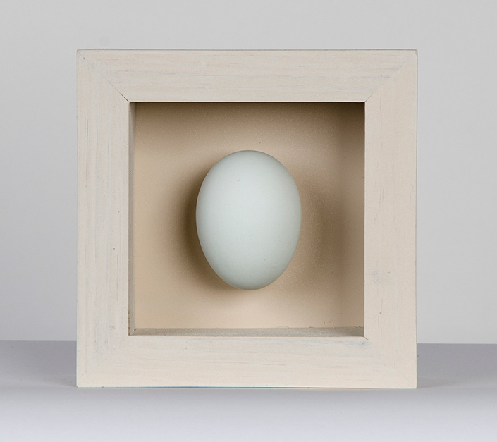 single duck egg box